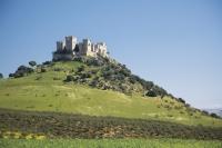800x600-foto_4_cordoba_castillo_de_almodovar_del_rio